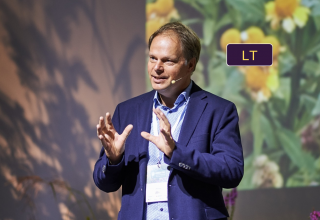 Naujos perspektyvos: daugiamečių augalų dizainas ir priežiūra, remiantis jų augimviete